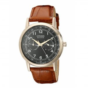 Đồng hồ Citizen nam Eco Drive Black Dial Brown Leather AO9003-08E